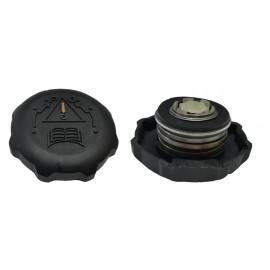 Nap- Termostatica P7 Peugeot Plast.s/orejas 205/405 93
