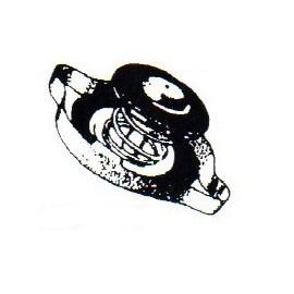 Nap- Termostatica P4 - Peugeot 504 Nafta- 505
